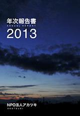 report_annualreport2013